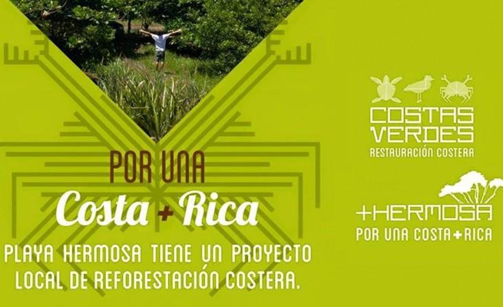 Proyecto de Reforestación COSTAS VERDES